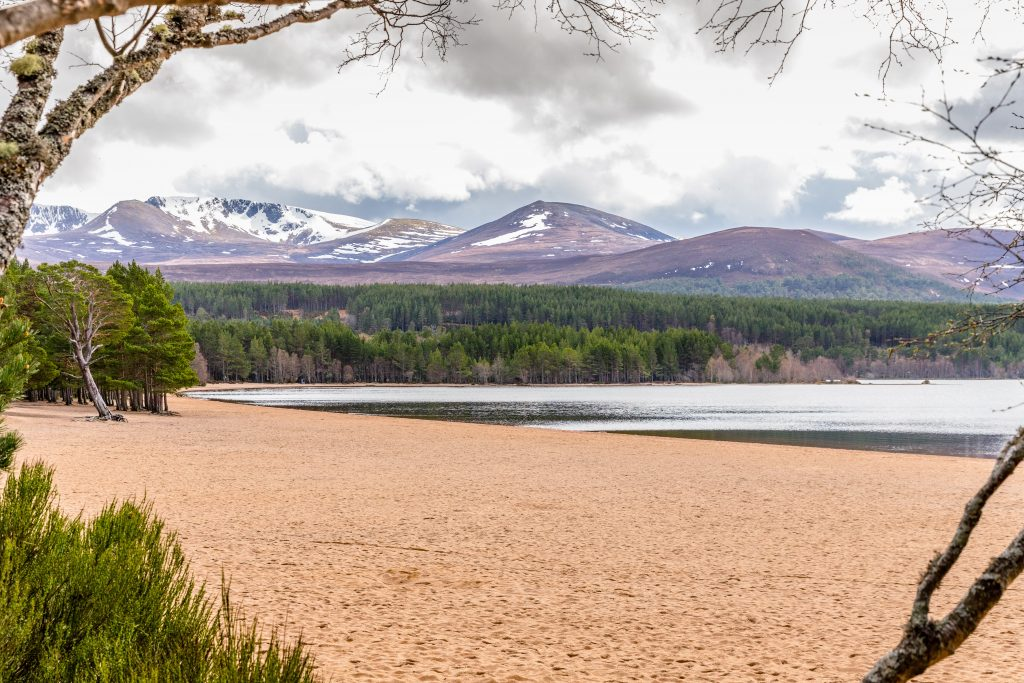 This image has an empty alt attribute; its file name is Travel-Loch-Morlich-3-1024x683.jpeg